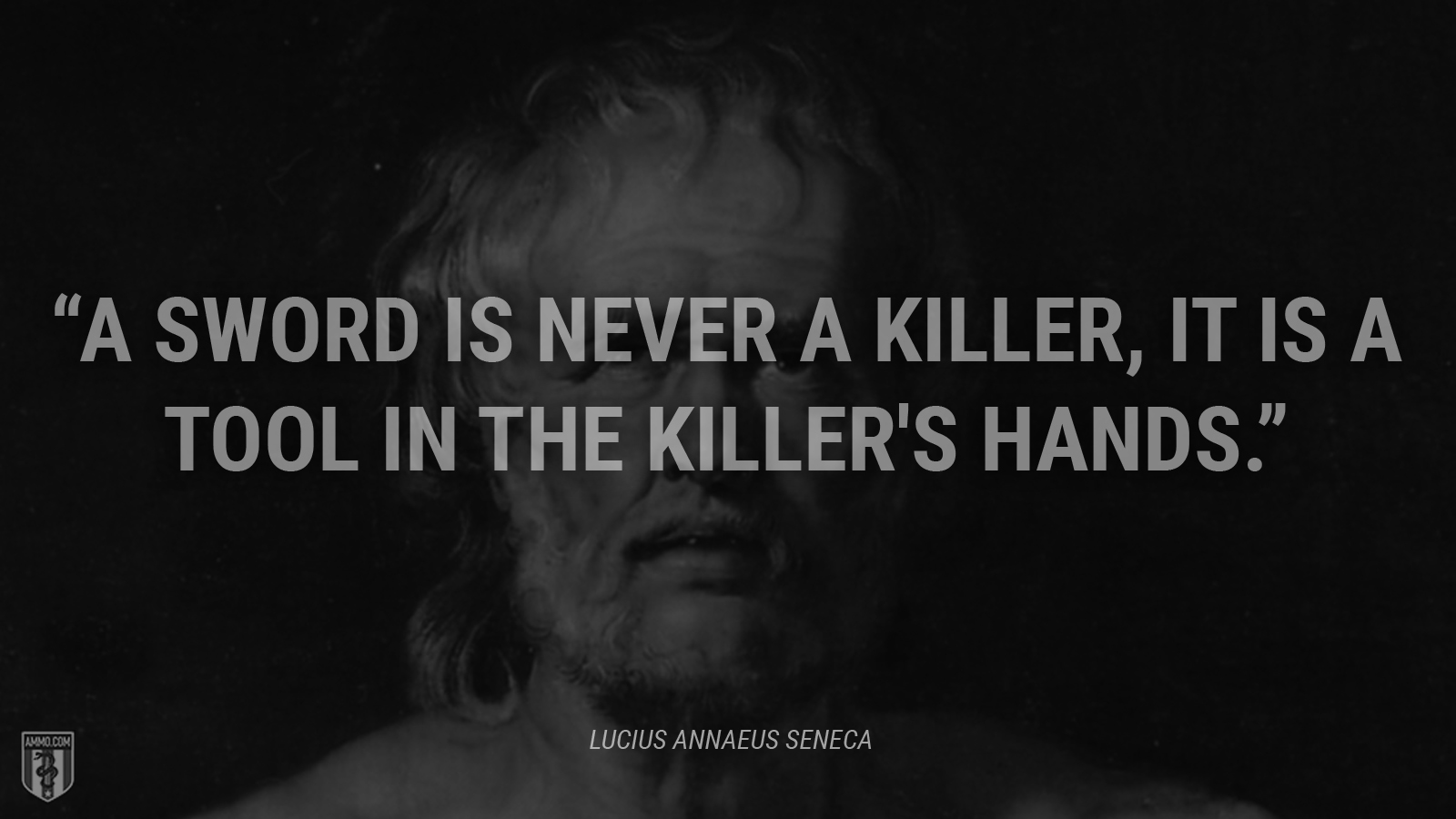 """A sword is never a killer, it is a tool in the killer's hands."" - Lucius Annaeus Seneca"
