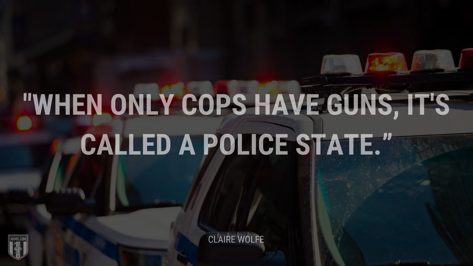 """""""When only cops have guns, it's called a police state."""" - Claire Wolfe"""