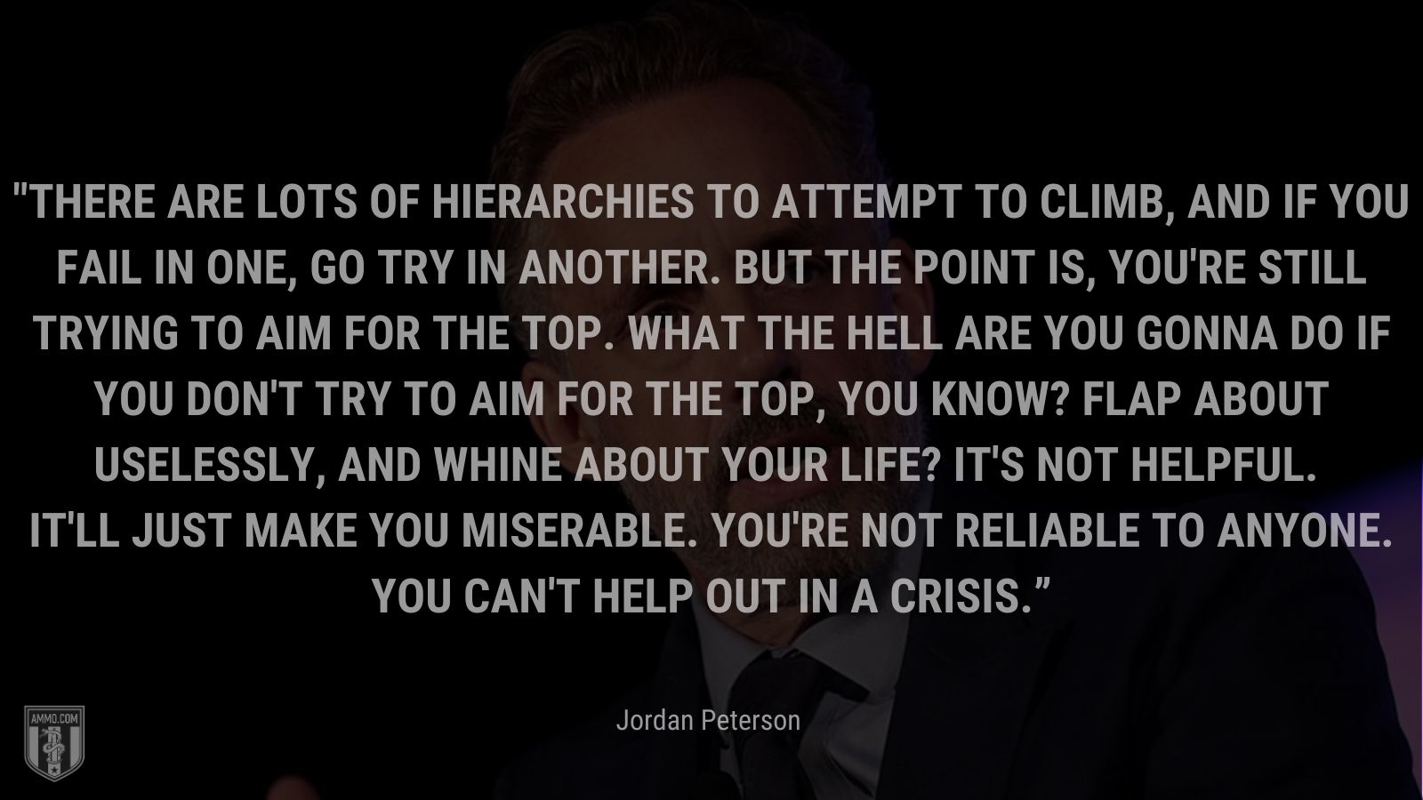 """""""There are lots of hierarchies to attempt to climb, and if you fail in one, go try in another. But the point is, you're still trying to aim for the top. What the hell are you gonna do if you don't try to aim for the top, you know? Flap about uselessly, and whine about your life? It's not helpful. It'll just make you miserable. You're not reliable to anyone. You can't help out in a crisis."""" - Jordan Peterson"""