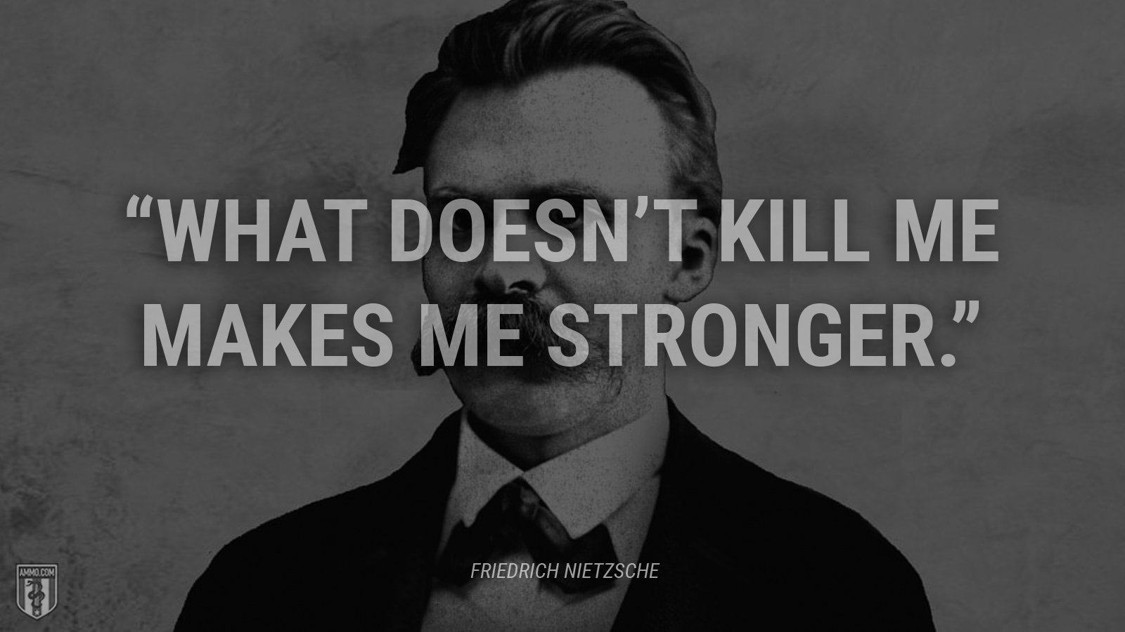"""What doesn't kill me makes me stronger."" - Friedrich Nietzsche"