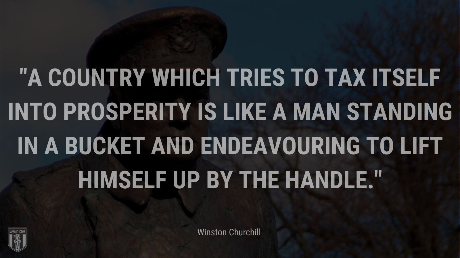 A country which tries to tax itself into prosperity is like a man standing in a bucket and endeavouring to lift himself up by the handle.